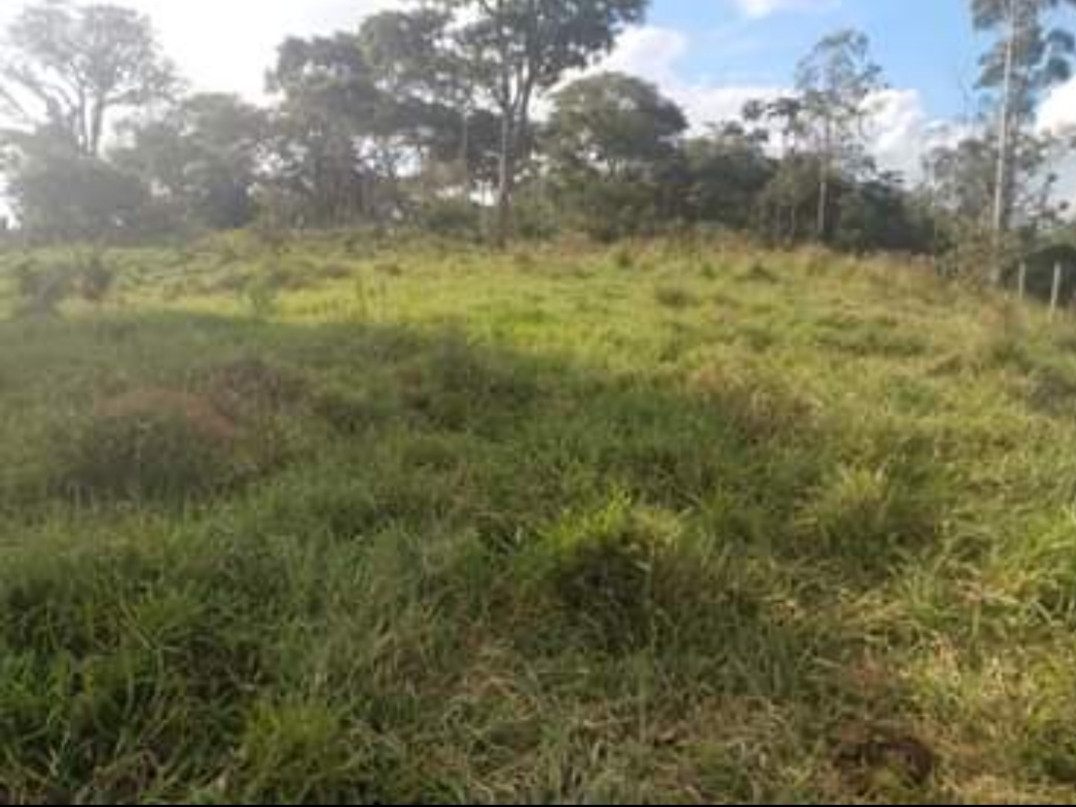 Terreno na cidade de Santa Isabel
