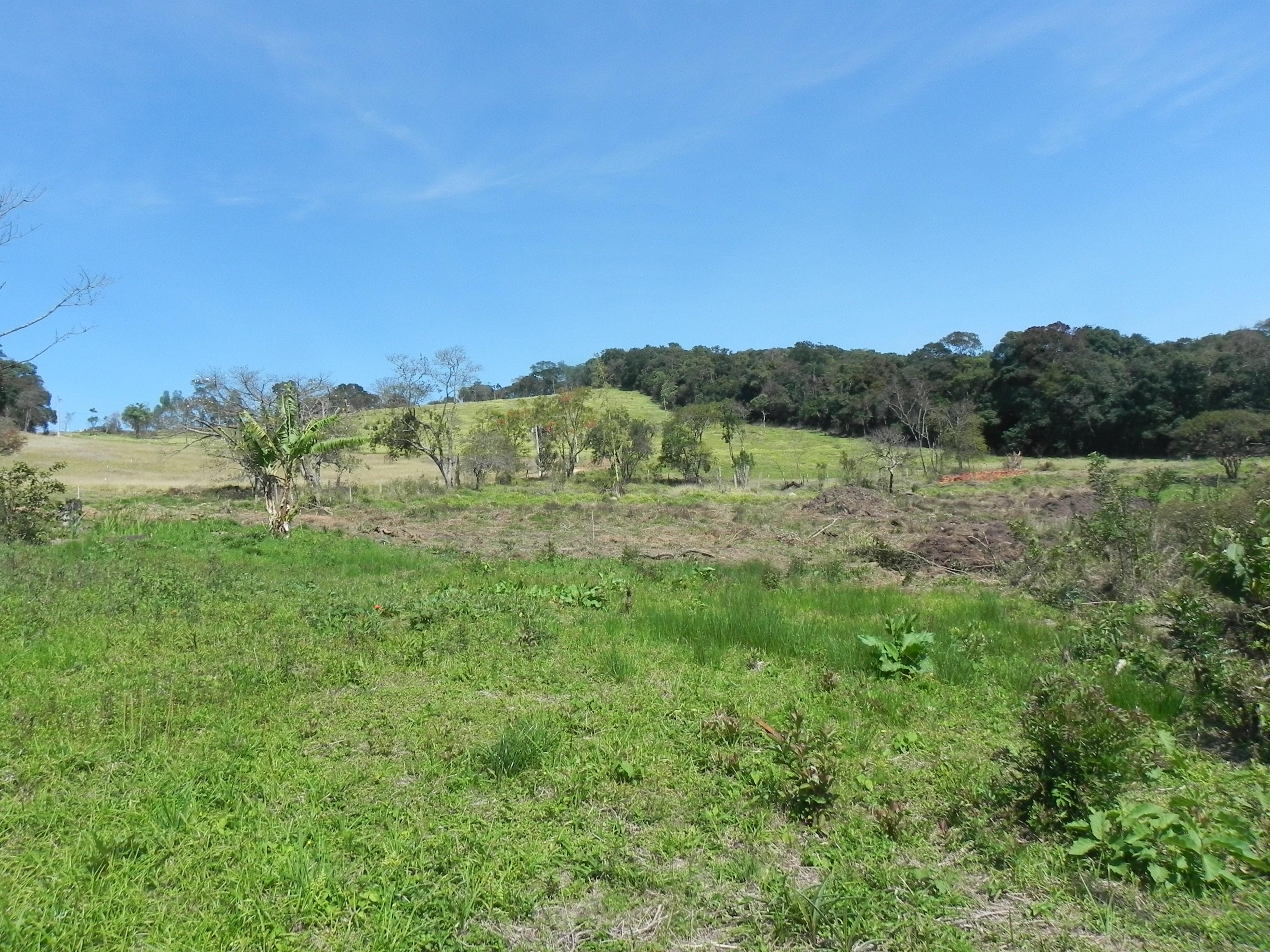 (K.A) Venha conferir terrenos em SP - topografia otima