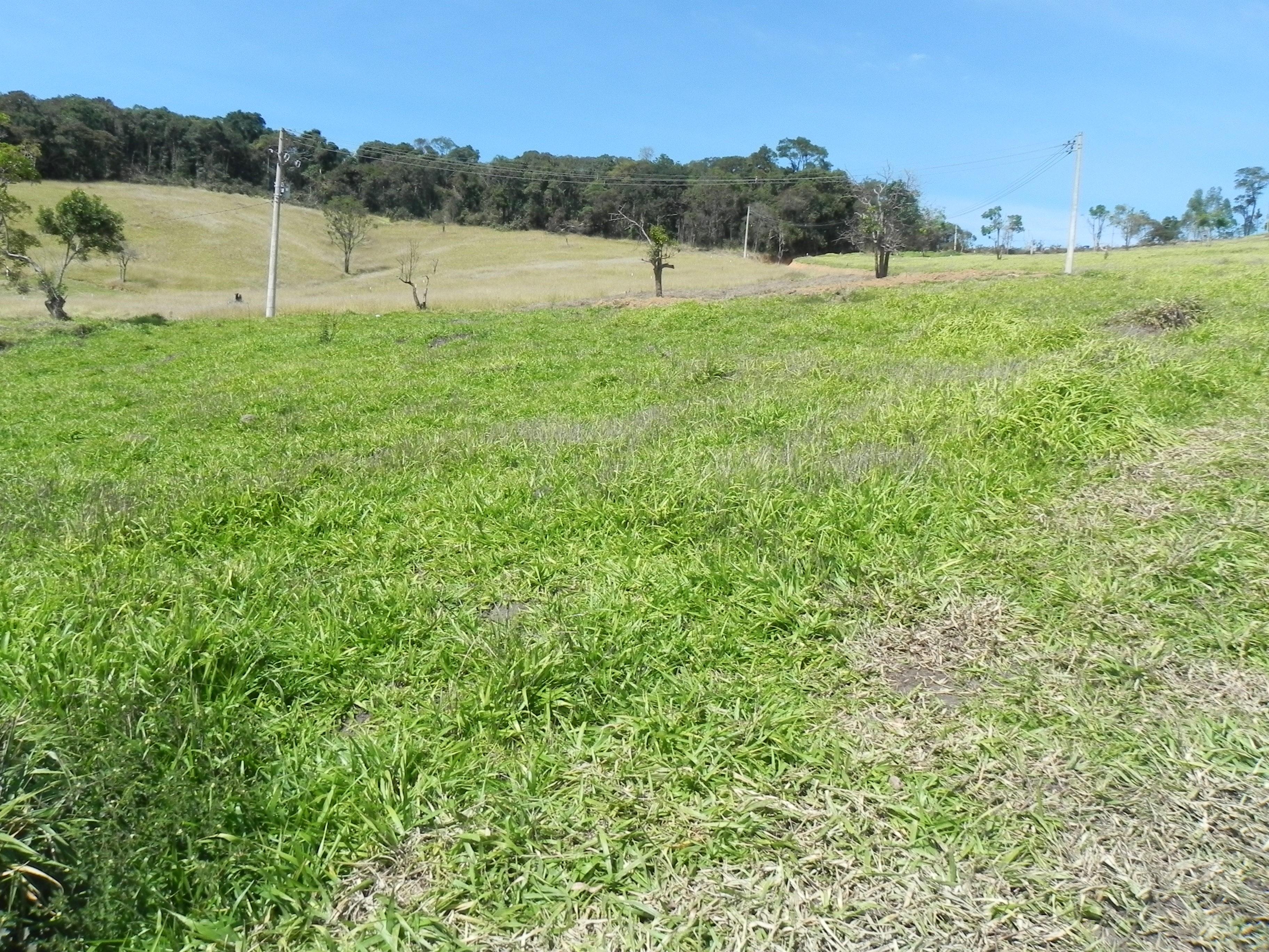(K.A) terrenos ideais para chacaras e sitios