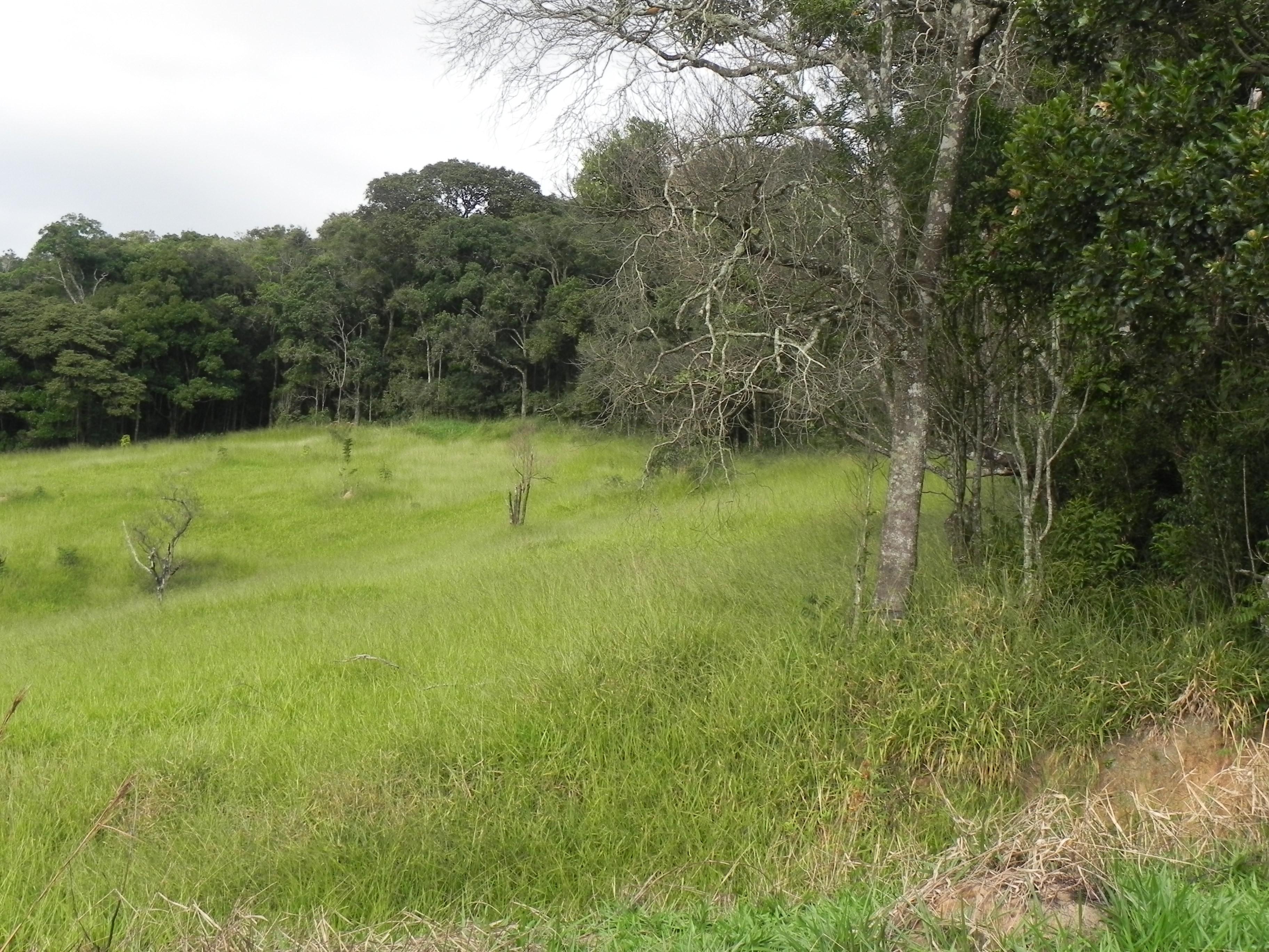 (K.A) condomínio fechado com lago - entrada de mil reais -