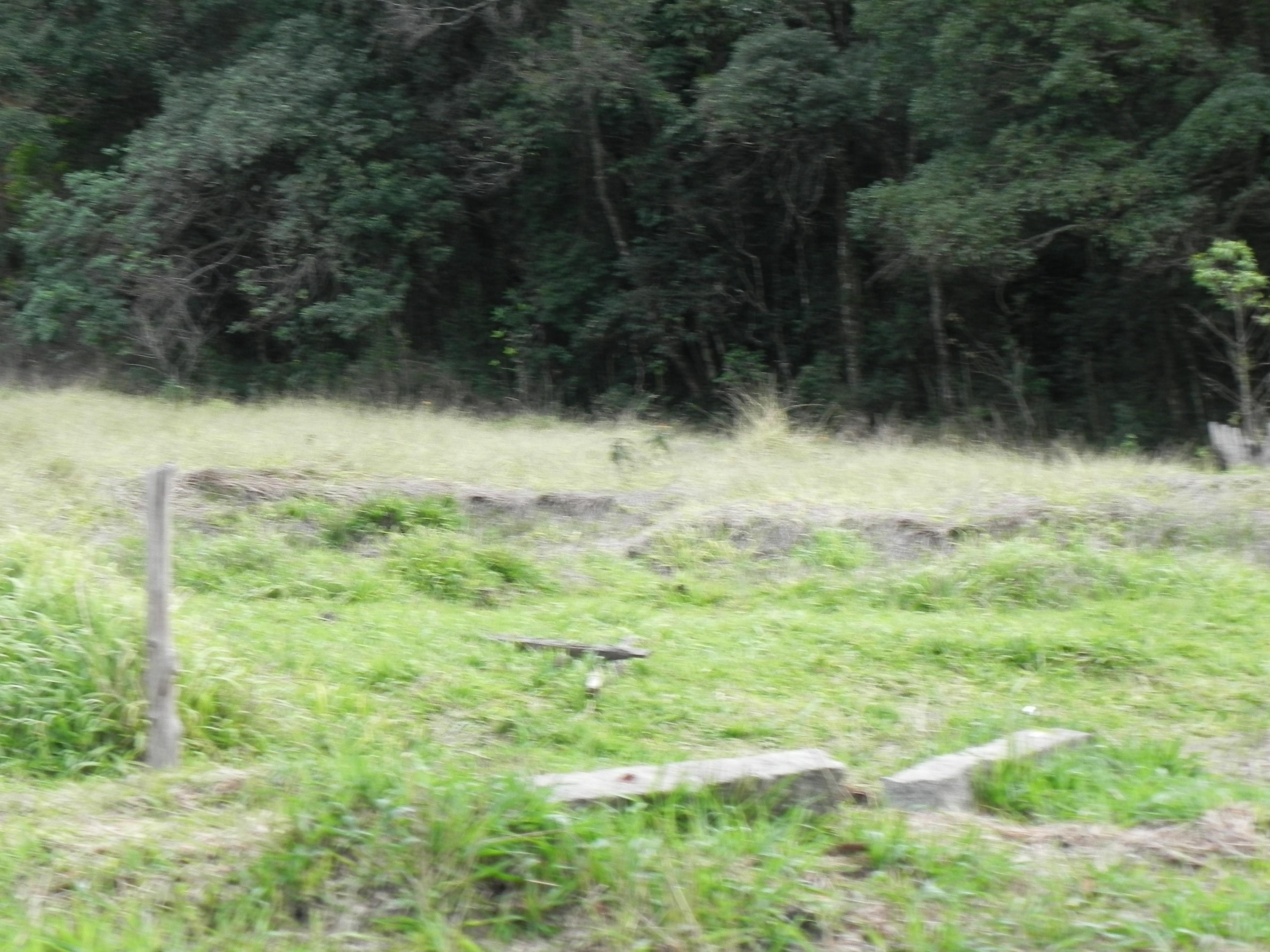 (K.A) terrenos 500m² apenas R429,999 a vista