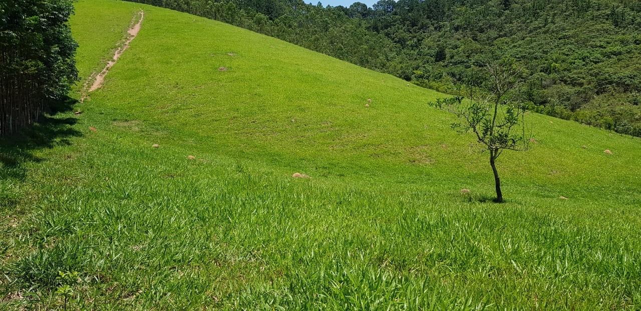 Terreno em Santa Isabel