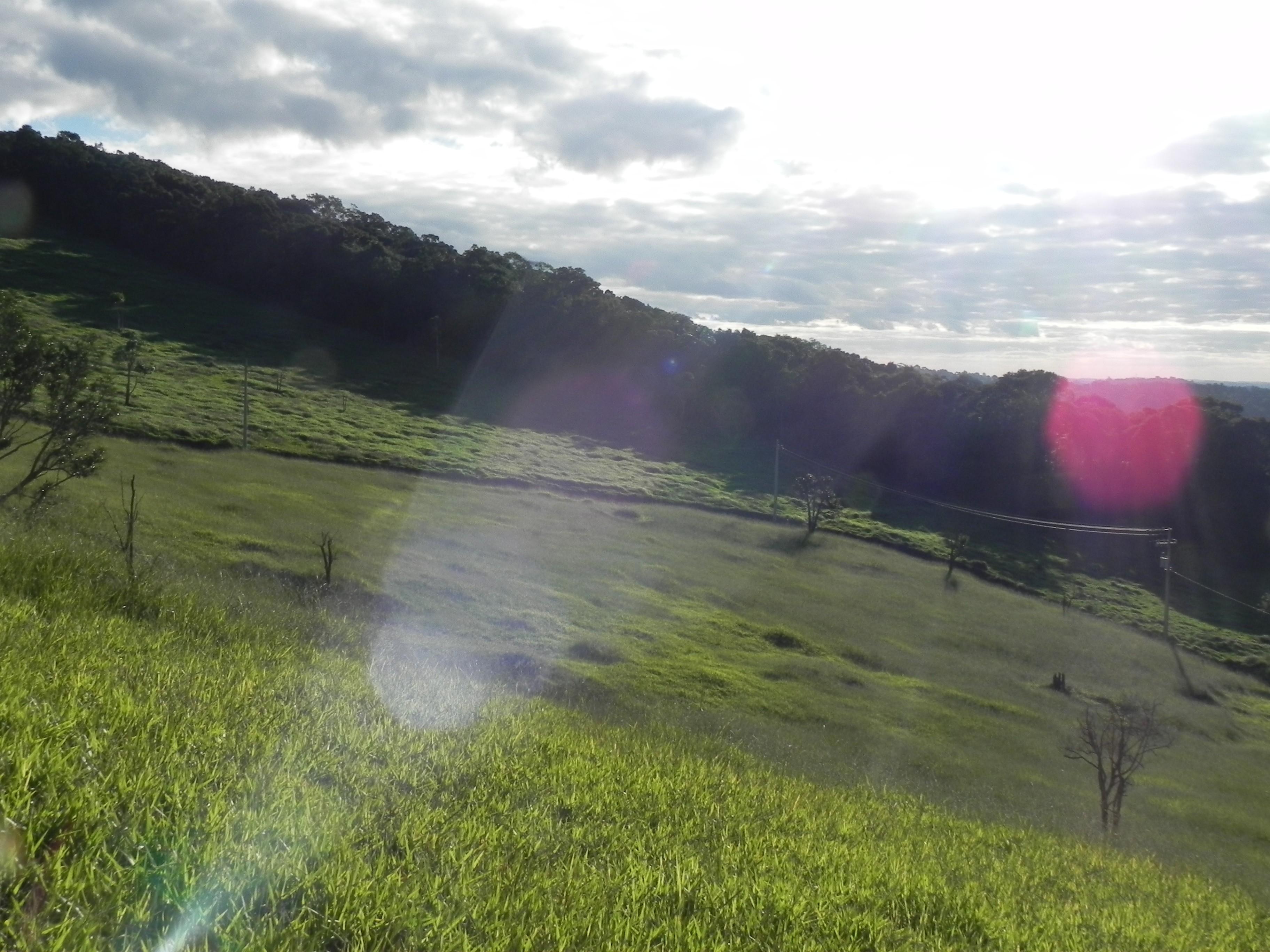 (K.A) terrenos limpos p/ chacaras