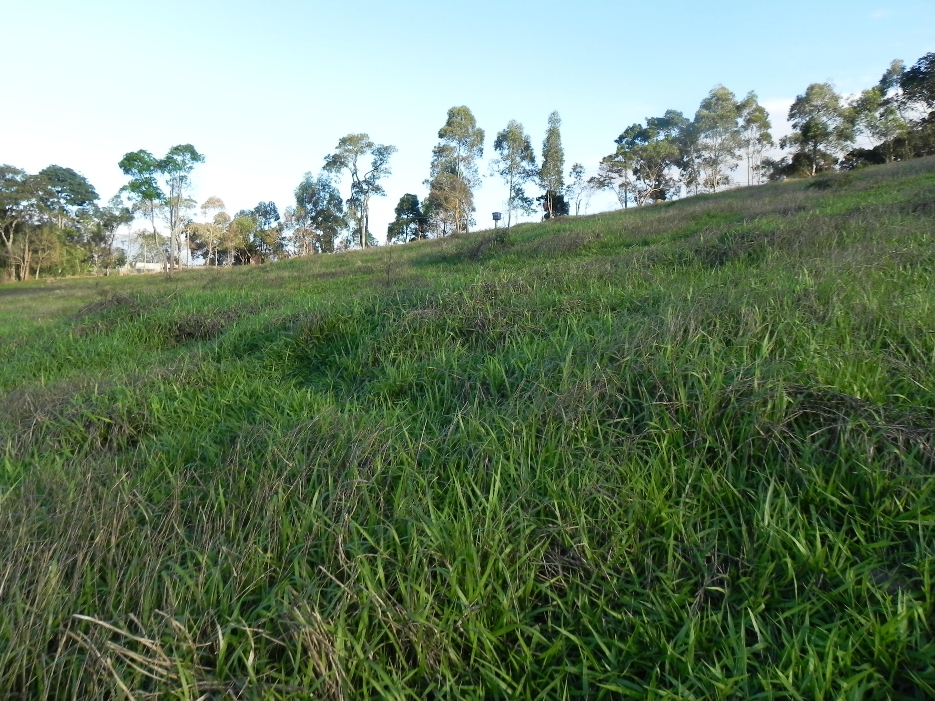 (K.A) terrenos com acesso otimo local otimo p/ construir