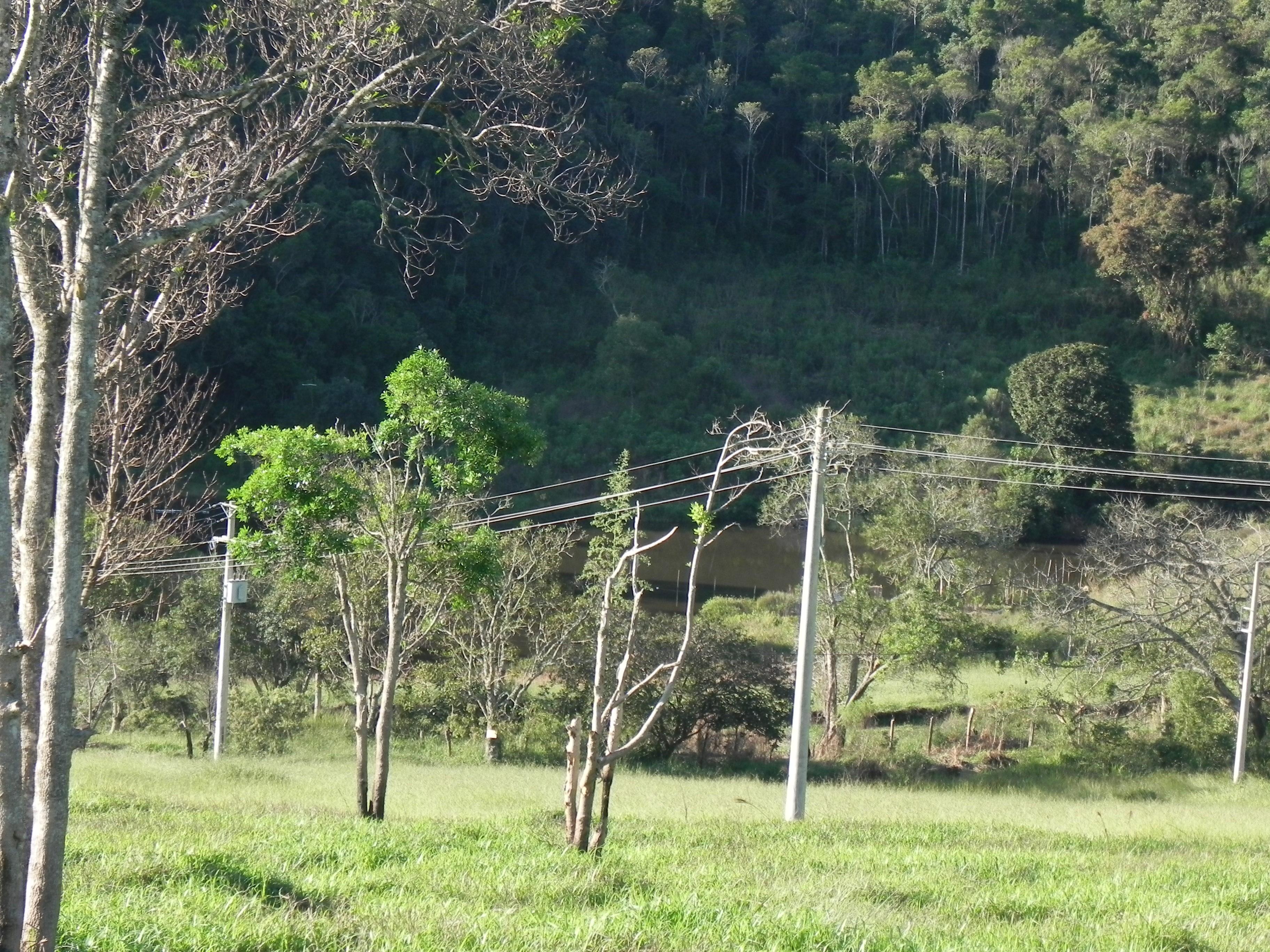 (K.A) saldo em até 1.000 reais - local para construir sua chacara