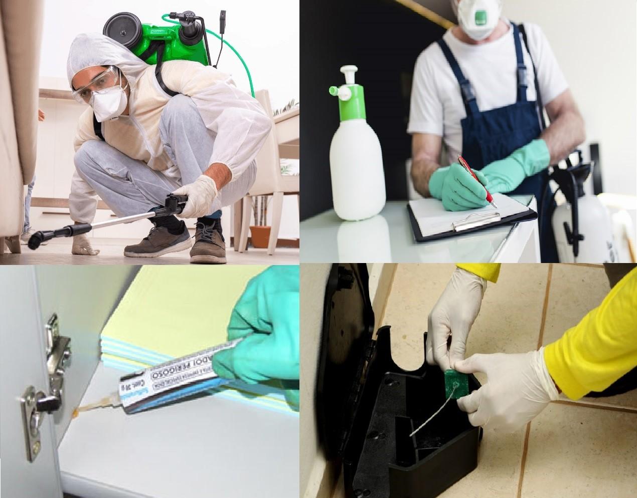 Dedetização e Higienização ambiental