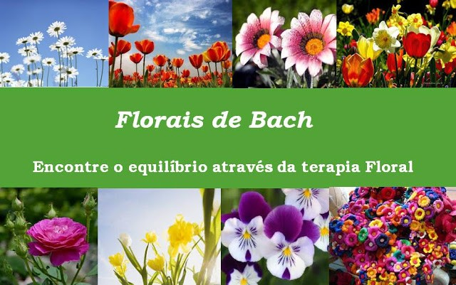 TERAPIA FLORAL - FLORAIS DE BACH