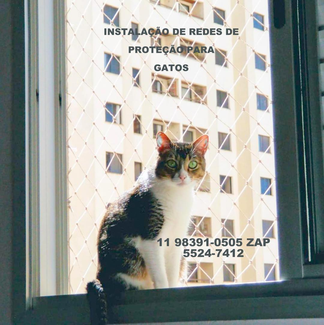 Saude , Redes de Proteção na Saude, Rua Traituba, (11) 5541-8283,