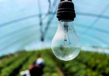 Faço manutenção elétrica em fazendas e etc ...