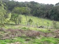 (K.A) 30 minutos do centro de SP - fernão dias - prox a Atibaia