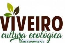 Viveiro Cultura Ecológica
