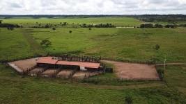 Fazenda para soja e pecuária em Rondônia