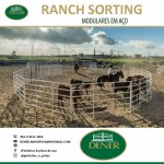 Pista de Ranch Sorting e Redondel